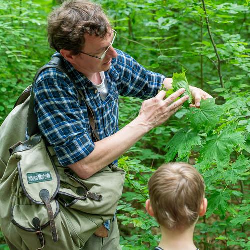 Bild zeigt Mann der Kinder in der Natur unterrichtet