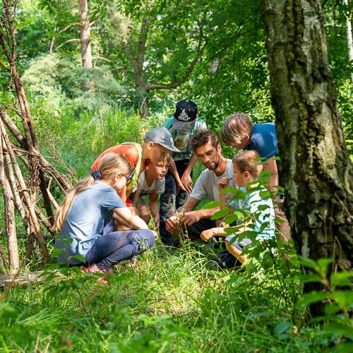 Bild zeigt Kinder die Pflanzen erklärt bekommen